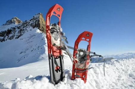 折叠滑雪用具:踏雪板